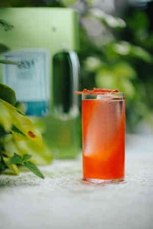 Eco Berries Cooler2 Low